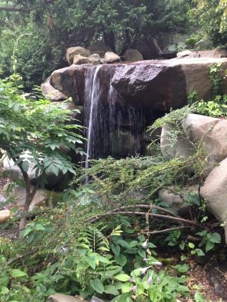 new_york-brooklyn_botanic_garden_fall