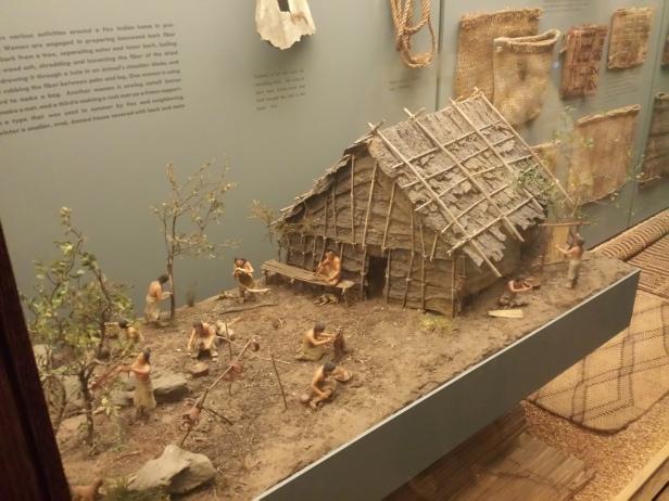 new_york-meseum_of_natural_history_human