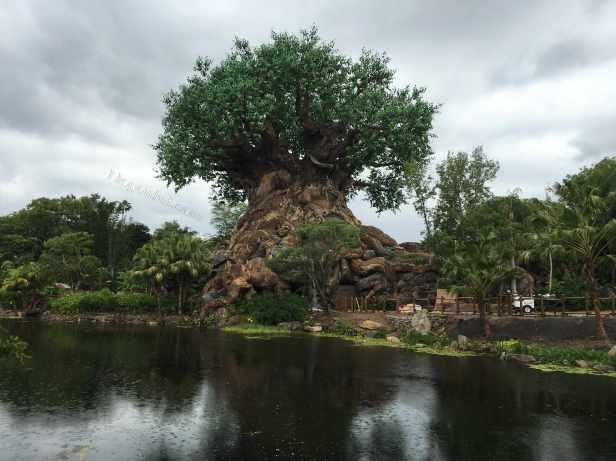 orlando-disney_animal_kingdom_tree_of_life