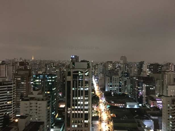 sao_paulo-google_cidade