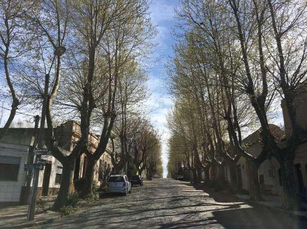 uruguai-colonia_del_sacramento-calle